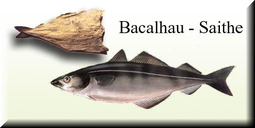 bacalhau (3)